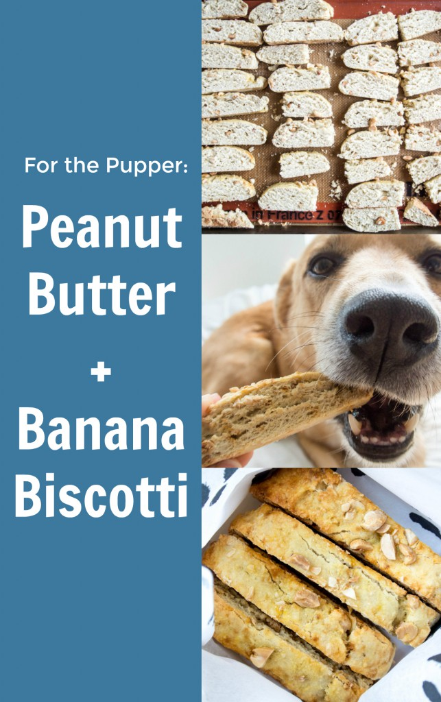 Banana + Peanut Biscotti for your Pupper by My Utensil Crock