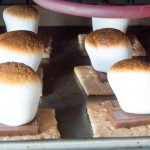 Indoor S'Mores for a Group