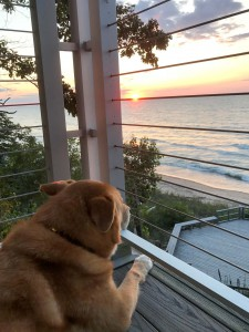 Sunsets on the balcony